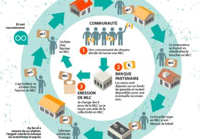 Infographie MLC